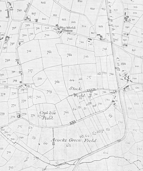 Tithe Map 1847 (extract) (Birmingham Libraries)