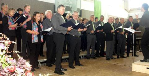 Chor - 2016, Leitung: Nikolaus Metz