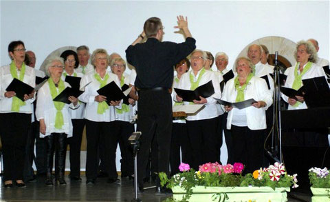 Chor 2016 - Leitung: Nikolaus Metz