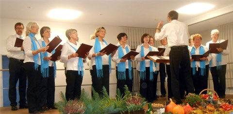 Chor 2015 - Leitung: Nikolaus Metz