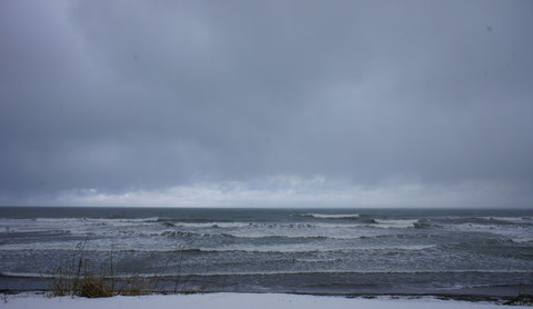 今日の日本海。華やかさはないけど、この景色も人生のスパイス。
