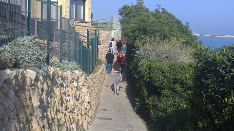 Paseando por el camino que va a Arc de Bara