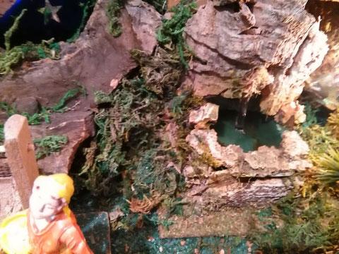 En esta fuente cae agua.