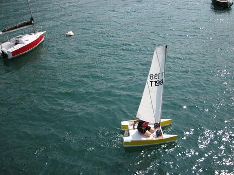 Turtle 198 sailing around Inseparable 398