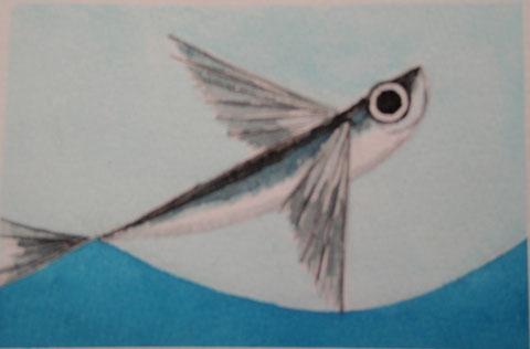 poisson vole