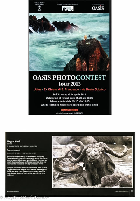 MOSTRA OASIS TAPPA A UDINE