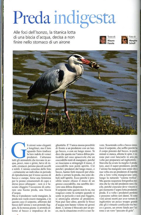 """pubblicazione rivista """"OASIS"""" luglio 2013"""