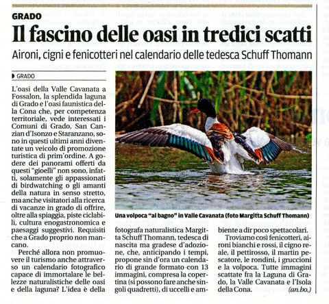 "articolo su ""il piccolo"" del 4 giugno 2013.... article in the newspaper ""il piccolo"" from 4 th june 2013"