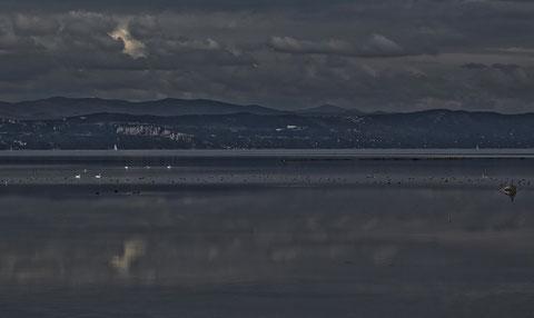 vista mare da punta barene