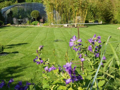 """Une prise de vue du """"Jardin du Clos"""" à VILLIERS-HERBISSE (17/06/2012)"""