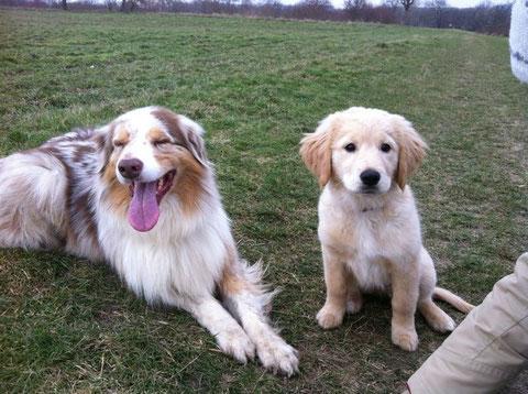 Lotta mit ihrem Leibwächter Cooper, der tolle Papa Qualitäten zeigt.