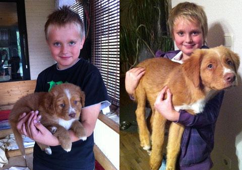 Beide auf dem Bild sind rechts 11 Wochen älter als links. :-)