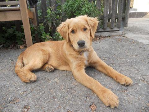 Emil 4,5 Monate