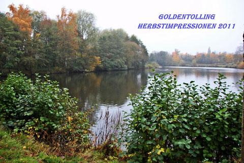 Aktion Goldentolling, sendet uns eure Lieblingsfotos vom Herbst  2011