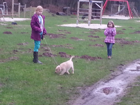 Nun waren wir gestern mal zum Spielplatz hin ...wo ja ganz viele kleine hügelchen waren -wer die wohl gebuddelt hat?