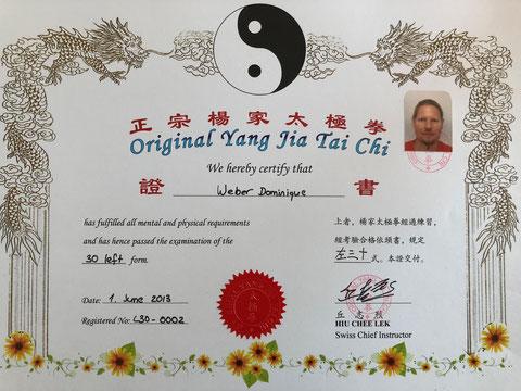 Yang Jia Tai Chi Meister Diplom 30 links
