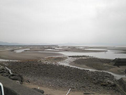 ここがホントの真玉海岸。皆さんマテ貝を掘ってました