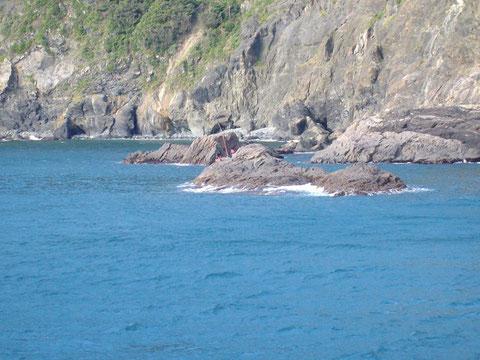 クジラに瀬替した磯遊人さま達です。八重ちゃんエギってます^^