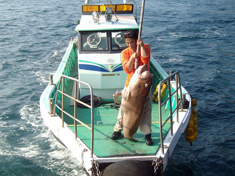 2010年8月22日 小バエ【掲載分】アラ140cm30kg