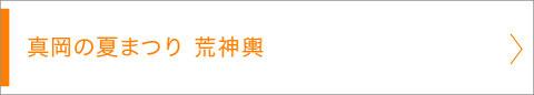 真岡の夏まつり 荒神輿, 画像, 写真, 2016年7月23日, 栃木県真岡市, 五行川での神輿川渡御