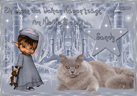 von Nicole und den Kätzchen