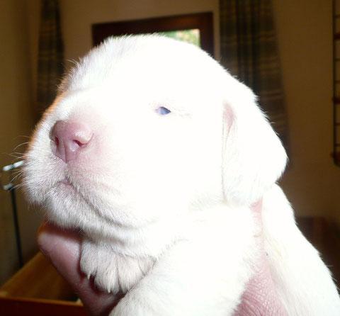 Yuna, die erste die die Augen aufgemacht hat.