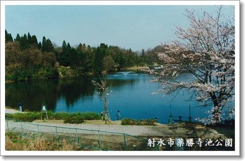 薬勝寺池公園を望んで