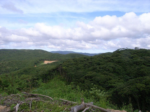 Mt. Akatsuchi, Kagoshima (Amamioshima Island)