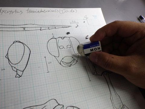 インクがしっかり乾いたら消しゴムで鉛筆の線を消す