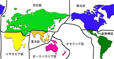 生物地理区(境界はおおよそ)