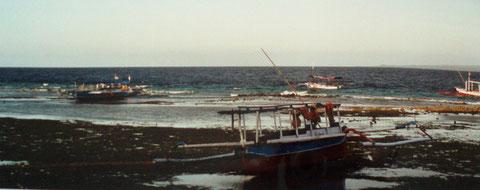 bei Ebbe liegen die Auslegerboote der Fischer am Hausriff - Gili Meno