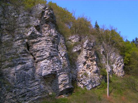 Kalkfelsen Nähe Wasserfall Dreimühlen bei Nohn