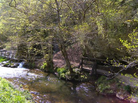 Bachlauf Wasserfall Dreimühlen Copyright Helga Rollmann, Nohn