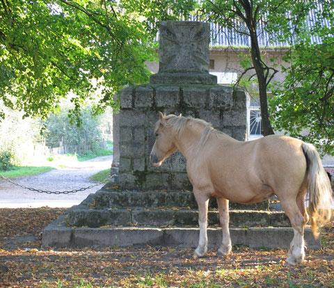 2007 Gr. Rominten - п. Краснолесье.  У памятника 1 Мировой.