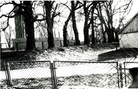 1989 г. Деревья посажены по периметру замка