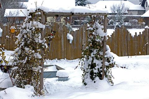 Ein bisschen Farbe im kalten Weiß   ©Luftbildfotografie Neuburg