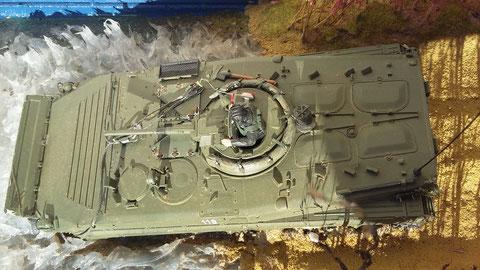 Frage an  die ehem. BMP-Fahrer: welches  Detail fehlt noch?