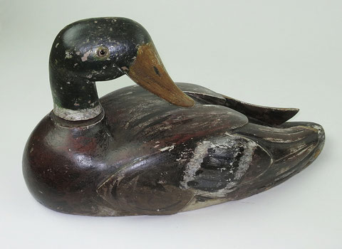 Mallard drake decoy duck with rotating head