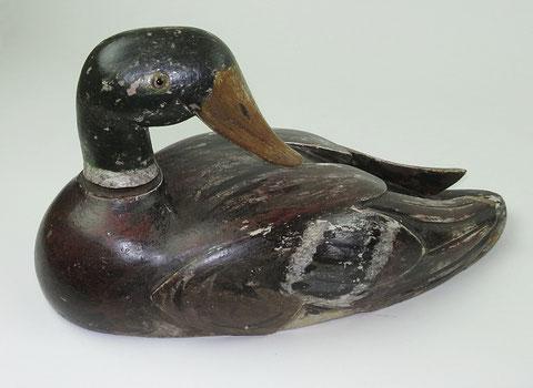 Mallard drake decoy duck with rotating head