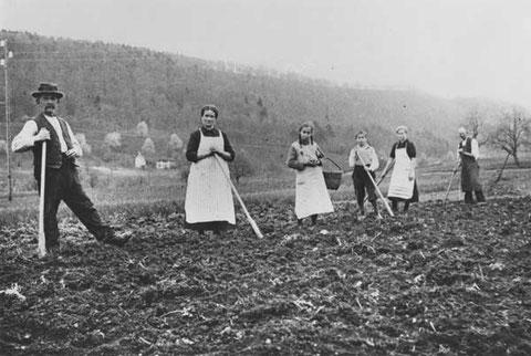 """Bei Kartoffeln setzen im """"Boden"""": August Hochreuter, """"sHeiriche"""", Karoline Fricker, Martha und Martin Herzog, Rosa (Brogle-) Fricker, Johann Fricker (Frühling 1935),"""