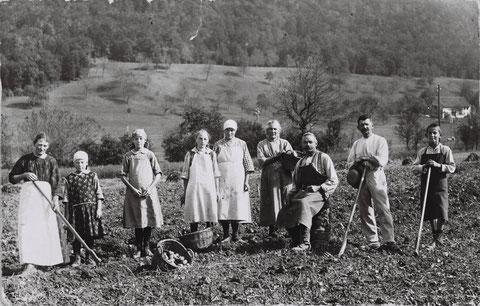 Familie Gottlieb Walde-Studer bei der Kartoffelerne um 1925. Vlnr.: Emmeline Brogle-Walde, Josy (Müller-) Brogle, Hildegard Brogle, Margrit Schmid (sBotte), Mathilde Walde, Rosa Walde-Studer (sSigerste), Gottlieb Walde, Wilhelm Brogle-Walde , Anton Walde