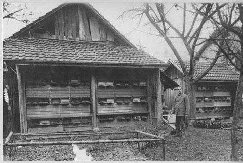 Gottfried Liechti-Liechti bei seinen Bienenhäusern zwischen Hauptstrasse und Bach, vis-a-vis der Alten Post. (Foto Ammann, Frick, ca. 1920)