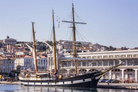 Nave Palinuro a Trieste  10 agosto 2014