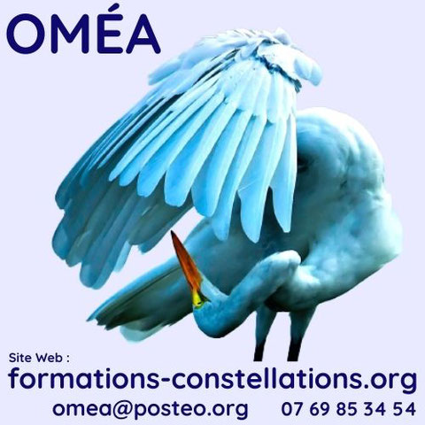 L'association OMÉA est un centre de formation, une école de Constellations Familiales et Systémiques, pour devenir Constellateur ou constelleur (animateur de constellations), située à proximité de La Rochelle en Charente-Maritime (17), France.