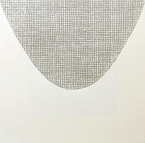 Parabelnetz, 20 x 20 cm, Bleistift auf Papier, 2014