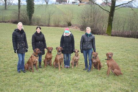 Birgit mit Chester, Chantal mit Dayo, Meret mit Django und Bentley und Nicole mit Rayha und Zina