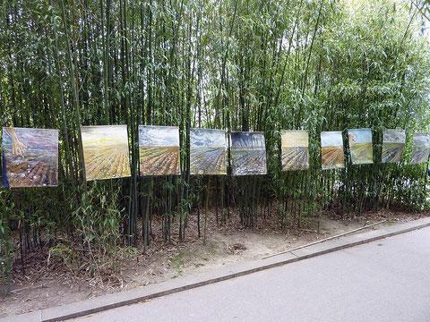 série de 10 kakemonos sur la Promenade Plantée Juin 2012