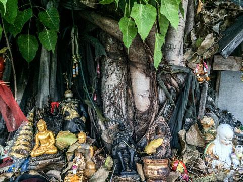 Budas pobres