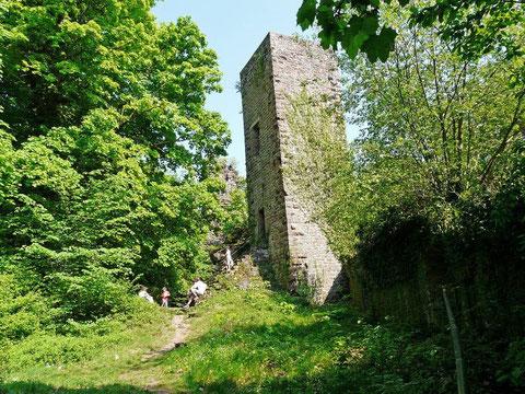 Le château de Greifenstein