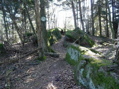 Le Kuhberg (595m)